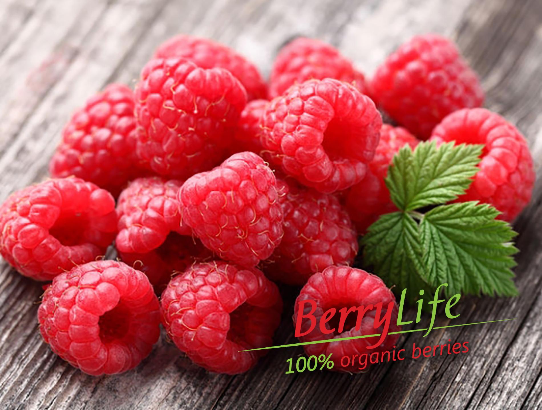 BerryLife_v1-2